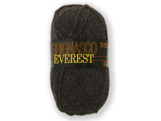 Everest_131